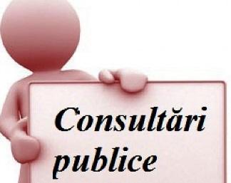 Proiectul legii privind Serviciul Fiscal de Stat a fost publicat pentru consultări publice